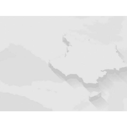 ECO 06 - Solvant de nettoyage écologique