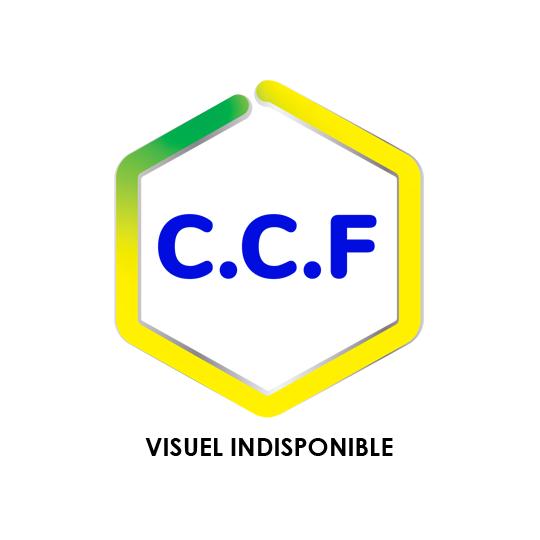 CCF 60 + - Dégraissant nettoyant sans chlore